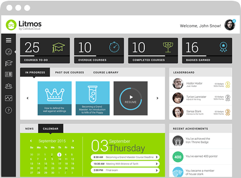 Litmos LMS learner dashboard screenshot